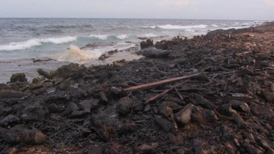 Photo of shore line after oil spill. Image courtesy of the UCSD.