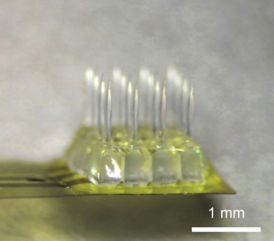 Zinc oxide is both optically transparent and able to conduct electricity. The material made it possible to make a device (enlarged image above) that could both stimulate brain activity with light and record activity in multiple neural microcircuits at the same time. Photo credit: Nurmikko Lab / Brown Univeristy
