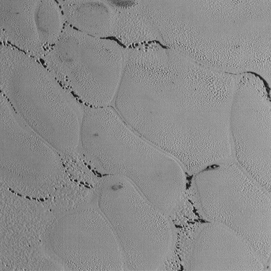 This wider view shows the snakeskin-like textured surface of Pluto's icy plains riddled with small pits. It almost looks like the dark areas in the sinuous channels between the mounds were once covered with frost or ice that has since sublimated away. They look similar to the polar regions on Mars where carbon dioxide frost burns off in the spring to reveal darker material beneath. Credit: NASA/JHUAPL/SwRI