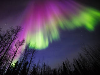 """Thanks to a lucky conjunction of two satellites, a ground-based array of all-sky cameras, and some spectacular aurora borealis, researchers have uncovered evidence for an unexpected role that electrons have in creating the dancing auroras. Though humans have been seeing auroras for thousands of years, we have only recently begun to understand what causes them. In this study, published in the Journal of Geophysical Research, scientists compared ground-based videos of pulsating auroras—a certain type of aurora that appears as patches of brightness regularly flickering on and off—with satellite measurements of the numbers and energies of electrons raining down towards the surface from inside Earth's magnetic bubble, the magnetosphere. The team found something unexpected: A drop in the number of low-energy electrons, long thought to have little or no effect, corresponds with especially fast changes in the shape and structure of pulsating auroras. """"Without the combination of ground and satellite measurements, we would not have been able to confirm that these events are connected,"""" said Marilia Samara, a space physicist at NASA's Goddard Space Flight Center in Greenbelt, Maryland, and lead author on the study. Pulsating auroras are so-called because their features shift and brighten in distinct patches, rather than elongated arcs across the sky like active auroras. However, their appearance isn't the only difference. Though all auroras are caused by energetic particles—typically electrons—speeding down into Earth's atmosphere and colliding brilliantly with the atoms and molecules in the air, the source of these electrons is different for pulsating auroras and active auroras. Active auroras happen when a dense wave of solar material—such as a high-speed stream of solar wind or a large cloud that exploded off the sun called a coronal mass ejection—hits Earth's magnetic field, causing it to rattle. This rattling releases electrons that have been trapped in the tail of that m"""
