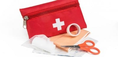 First Aid Kit. Image credit: DLG Images