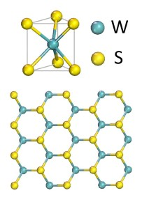 A single molecular layer of tungsten (W) and sulfide (S) is widely regarded as one of the most promising 2D semiconductors for photonic and optoelectronic applications.
