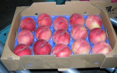 Peaches from Kazuno. Kazuno is located in the region that is climatically northernmost. The farmers have captured a niche in the mass market by shipping good quality peaches late in the season, when shipments from other producers are at an end. Image credit: Mariko Fujisawa et al.