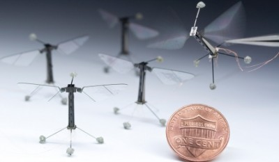 Robot insects may someday be used in agriculture and disaster relief situations. Credit: Microrobotics Lab, Harvard John A. Paulson School of Engineering and Applied Sciences and the Wyss Institute for Biologically Inspired Engineering.