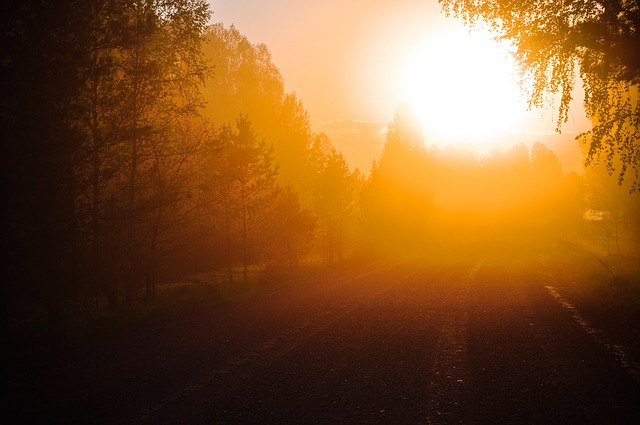The new-and-improved data tracking tool, called Sunlight, to help authorities track the way users' information is handled online. Image credit: Larisa-K via pixabay.com, CC0 Public Domain.