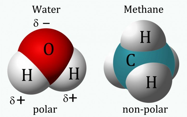 At the left, water, consisting of hydrogen (H) and oxygen (O), is a polar solvent. Oxygen attracts electrons more strongly than hydrogen does, giving the hydrogen side of the molecule a net positive charge and the oxygen side a net negative charge. The delta symbol ( ) indicates that the charge is partial, that is less than a full unit of positive or negative charge. At right, methane is a non-polar solvent, due to the symmetrical distribution of hydrogen atoms (H) around a central carbon atom (C). Credit: Jynto as modified by Paul Patton.