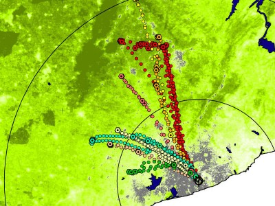 Individual flight routes of straw-coloured fruit bats during he dry season (grey: urban area of Accra, green: tree density). Image credit: MPI f. Ornithology/ J. Fahr