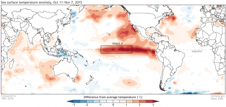 Average sea surface temperature departure from the 1981-2010 average over the four weeks ending on November 7. Graphic by climate.gov, data from NCEP-NCAR reanalysis.