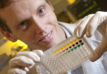 Dr Andrew Bulmer, Lecturer in School of Medical Sciences. Dr Bulmer is investigating the effects oaf the bodies pigments in protecting cells and DNA from cancer and cardiovascular disease. Photo credit: Griffith University
