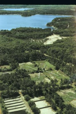An aerial view looking southeast of the treated-wastewater infiltration beds at Joint Base Cape Cod. The wastewater disposal beds (source of the nitrogen contamination) appear in the foreground. In the background is a freshwater pond that is receiving discharge of some of the groundwater contaminants. Toxic waste disposal at the site ended in 1995.