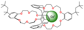 The BOBCalix6 (Calix[4]arene-bis(t-octylbenzo-crown-6) molecule shown with a positively charge cesium ion held inside one of its cavities.
