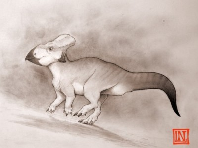The leptoceratopsids have a beak-shaped jaw suggesting they had a different diet to their western relatives.