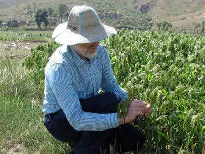 Martin Jones with millet in North China. Credit: Cambridge University