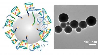 On left is a schematic illustration of liquid-metal 'nano-terminators.' The red spheres are Dox. At right is a representative TEM image of liquid-metal nano-terminators. Image credit: Yue Lu