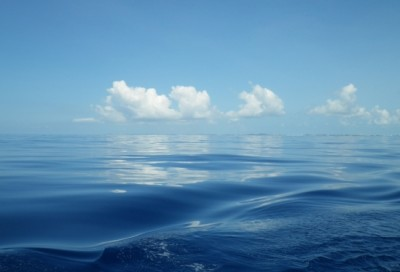 A calm Sargasso Sea aboard the R/V Atlantic Explorer. Imsge credit: Craig Carlson