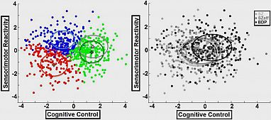 LEFT: Psychosis cases in Biotype1 (red), Biotype2 (blue), Biotype3 (green) cluster distinctly when graphed by biomarker constructs (controls = gray). RIGHT: Cases similarly graphed by traditional categories schizophrenia (sz), schizoaffective disorder (SZaff), and bipolar disorder with psychosis (BDP) clustered less distinctly. Image credit: Brett Clementz, Ph.D., University of Georgia