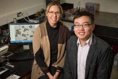 Illinois professor Nancy Sottos and postdoctoral researcher Wenle Li led a team that developed color-changing indicators to highlight microscopic cracks in structural materials. Photo credit: L. Brian Stauffer