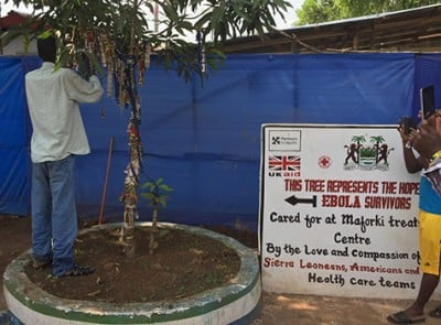 "An Ebola survivor ties a ribbon to a ""Survivor's Tree"" in Port Loko, Sierra Leone, in 2015. When patients tested negative for Ebola and were discharged from treatment, they tied ribbons to the tree to celebrate and to show their  communities they were no longer sick or contagious. Researchers who treated Ebola-infected children in Sierra Leone have developed a set of guidelines aimed at improving the treatment of children with Ebola. Such children, particularly those under age 5, faced a high risk of death in the outbreak. Image credit: Indi Trehan"