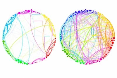 "This diagram demonstrates the simplified results that can be obtained by using quantum analysis on enormous, complex sets of data. Shown here are the connections between different regions of the brain in a control subject (left) and a subject under the influence of the psychedelic compound psilocybin (right). This demonstrates a dramatic increase in connectivity, which explains some of the drug's effects (such as ""hearing"" colors or ""seeing"" smells). Such an analysis, involving billions of brain cells, would be too complex for conventional techniques, but could be handled easily by the new quantum approach, the researchers say. Image courtesy of the researchers"
