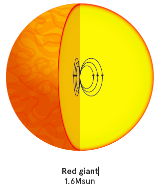 The magnetic fields seen in red giants are left over from an earlier phase when the stellar cores hosted turbulent convection, creating a 'magnetic dynamo'. Magnetic fields are only present in stars more massive than the Sun because core convection only occurs in those stars. Credit: University of Sydney