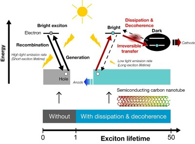 """Energy dissipation and decoherence utilized for the better efficiency in photovoltaics A small amount of energy dissipation associated with decoherence causes the exciton to irreversibly changes excitons into a """"dark"""" state in which they cannot emit photons. In the case of a semiconductor carbon nanotube, this phenomenon results in a nearly 50-fold increase in exciton lifetime. Image credit: Yasuhiro Yamada, Youhei Yamaji, and Masatoshi Imada"""