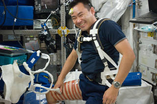 JAXA (Japan Aerospace Exploration Agency) astronaut Akihiko Hoshide performs a Sprint ultrasound pre-scan during Expedition 32 on the International Space Station in August 2012. Ultrasound scans are used to evaluate spaceflight-induced changes in the muscle volume to determine the effectiveness of exercises to combat muscle and bone loss. Credits: NASA