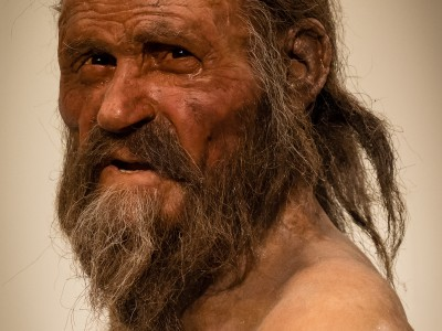 No laughing matter: while iceman Oetzi looks very happy in this reconstruction, he was probably plagued by stomach problems in real life, as a genome analysis of his stomach bacteria has shown. Image credit: Wikimedia/Thilo Parg/CC BY-SA 3.0
