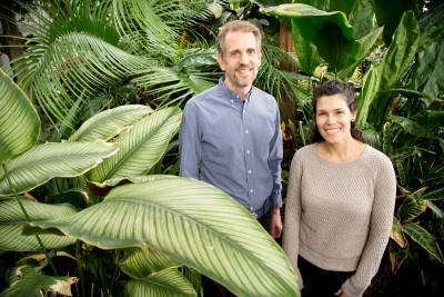 University of Illinois plant biology professor James Dalling, graduate student Adriana Corrales and their colleagues found that fungi that associate with tree roots can profoundly influence plant diversity in a tropical forest. Photo by L. Brian Stauffer