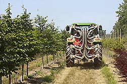 ARS's new automated spraying system can detect the presence, size, shape and foliage density of trees and then apply the optimum amount of pesticide in real time