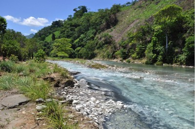 This hydrogen sulfide-rich spring in the Puyacatengo River in Mexico is one of many toxic environments where the Atlantic molly lives. A Kansas State University researcher has helped discover the mechanisms that help the fish species survive