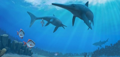 The demise of ichthyosaurs has long been a mystery. Image credit: Andrey Atuchin