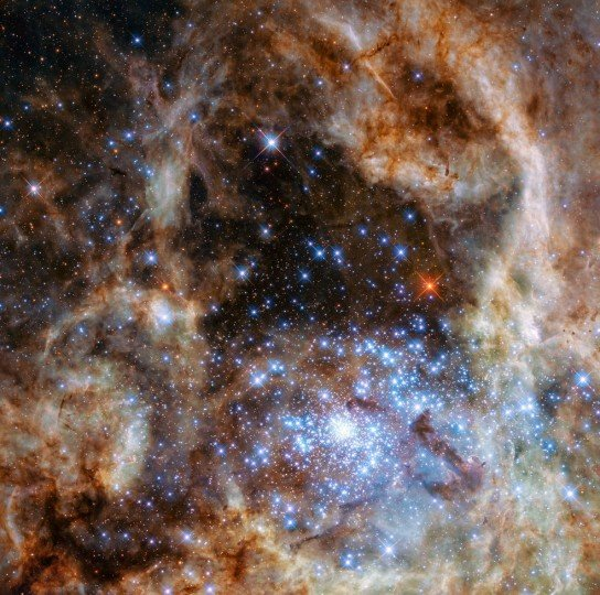This Hubble image shows the central region of the Tarantula Nebula in the Large Magellanic Cloud. The young and dense star cluster R136 can be seen at the lower right of the image. This cluster contains hundreds of young blue stars, among them the most massive star detected in the universe so far. Credits: NASA, ESA, P Crowther (University of Sheffield)