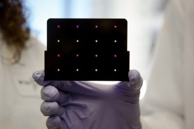 A black cartridge containing a paper-based diagnostic for detecting the Zika virus is held up by a researcher at Harvard's Wyss Institute. Areas that have turned purple indicate samples infected with Zika, while yellow areas indicate samples that are free of the virus. Image credit: Wyss Institute at Harvard University