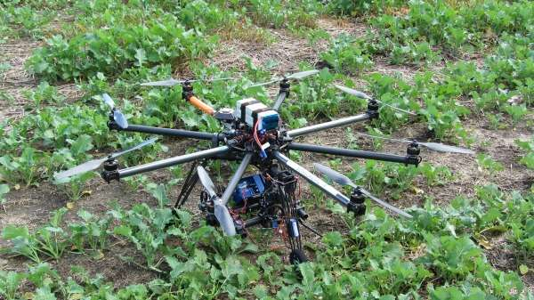 An eight-rotor drone pictured in a canola field diagnosing potassium deficiency and aphid infestation via an on-board multi-sensor camera. Image credit: Science Network WA.
