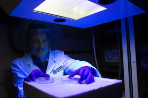 Dr Olivier Reelfs with the UV lamp. AP Commercial Photography