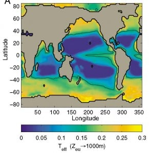 Results show that the transfer efficiency of organic carbon from the surface to the deep ocean ranges from just 5 percent in the subtropics to around 25 percent near the poles. Image credit: Thomas Weber/University of Washington