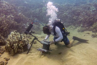 Scripps Oceanography graduate student Andrew Mullen positions the Benthic Underwater Microscope to study coral competition. Credit: Jaffe Laboratory for Underwater Imaging/Scripps Institution of Oceanography, UC San Diego