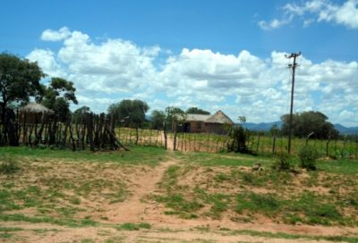 Zimbabwe farm PreviousPauseNext2 of 2 A fence protects what should be a vibrant maize crop near Gweru, Zimbabwe in March 2016. Poor rainfall let to near-complete failure of rain-fed agriculture in this region. Image credit: Greg Husak