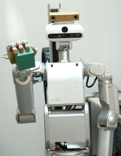 Floka has a sensor head whose camera-eyes can perceive color and depth, which allows the robot to see obstacles. Image credit: CITEC/Bielefeld University.