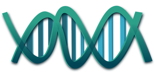 Genes that predispose us to depression might not be all that sinister after all – researchers Elaine Fox and Cristopher Beevers suggest they may only make us more sensitive to the environment, which, in turn, leads to different cognitive biases that inform our mental resilience or otherwise. Image credit: Clker Free Vector Images via pixabay.com, CC0 Public Domain.