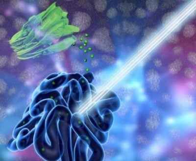 A new UB-led study suggests that chlorophyll-based nanoparticles are an effective imaging agent for the gut. Photo illustration credit: University at Buffalo.