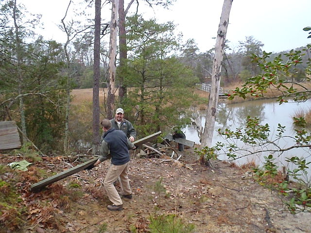 Volunteering at the age of 40 or older brings significant mental health benefits and a sense of wellbeing. Image credit: Virginia State Parks staff via Wikimedia, CC BY 2.0