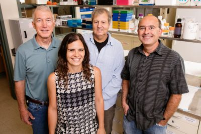 """Researchers at the University of Illinois (from left) Ed Roy, Catarina Rendeiro, William Helferich, and Justin Rhodes studied the long-lasting effects of """"chemobrain."""" Photo by L. Brian Stauffer"""