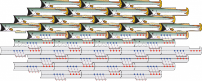 """Simple shapes, such as these fish, can tile large surfaces if their geometry allows for symmetry. The edges each tessellating fish share with their surroundings are identical from fish to fish. Similarly, assemblies of collagen protein """"tiles"""" can be achieved when the chemical and physical environments of every tile are designed to be identical, allowing scientists to produce synthetic collagen nanofibers."""