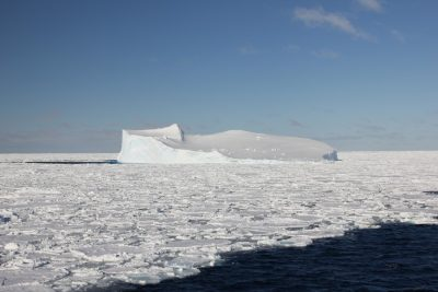 New research has found methylmercury – a potent neurotoxin – in sea ice in the Southern Ocean. Credit: The University of Melbourne
