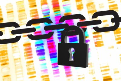 Researchers from MIT's Computer Science and Artificial Intelligence Laboratory and Indiana University at Bloomington describe a new system that permits database queries for genome-wide association studies but reduces the chances of privacy compromises to almost zero. Illustration credit: Christine Daniloff/MIT