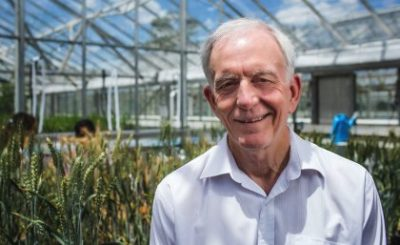Professor Robert Henry ... discovery turns half a century of plant biology on its head. Credit: The University of Queensland