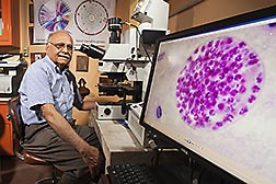 ARS microbiologist Jitender Dubey examines a Toxoplasma gondii specimen with a compound microscope
