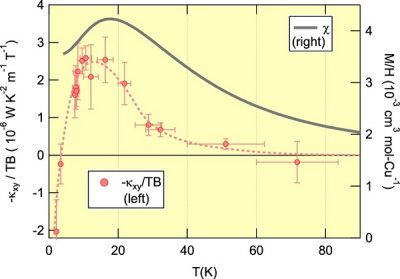 The temperature dependence found in thermal Hall conductivity and spin susceptibility of the kagomé volborthite These graphs illustrate the temperature dependence of the thermal Hall conductivity, normalized by the temperature and the magnetic field (pink circle; left units), and that of the magnetic susceptibility (gray line; right units). The spin liquid state is formed below the peak temperature of the magnetic susceptibility. The maximum of the thermal Hall conductivity is also observed around the peak temperature, implying a strong connection between the formation of the spin liquid and the thermal Hall conductivity. Image credit: Minoru Yamashita.
