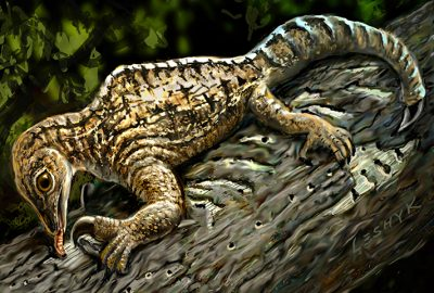 In this illustration set 212 million years ago in what is today New Mexico, a Drepanosaurus rips away tree bark with its massive claw and powerful arm. Painting by Victor Leshyk